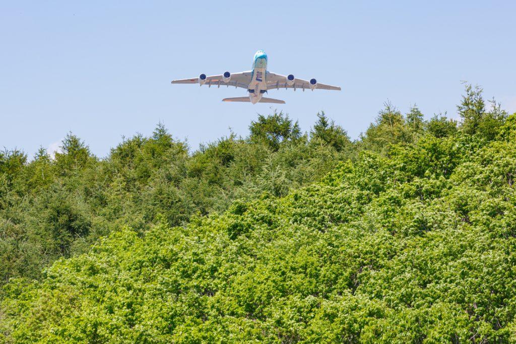 フライングホヌ2号機飛び出し