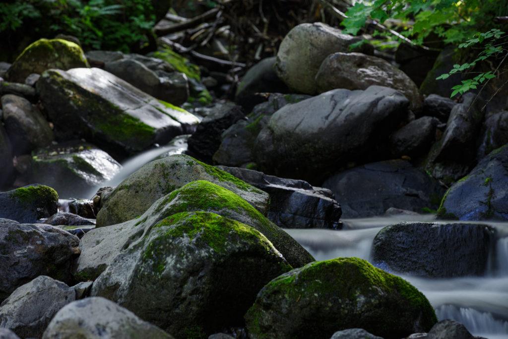 空沼岳の川