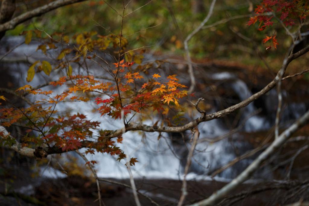 ラルマナイの滝の紅葉