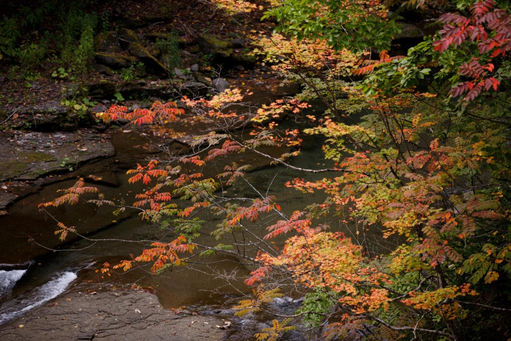 恵庭渓谷の紅葉