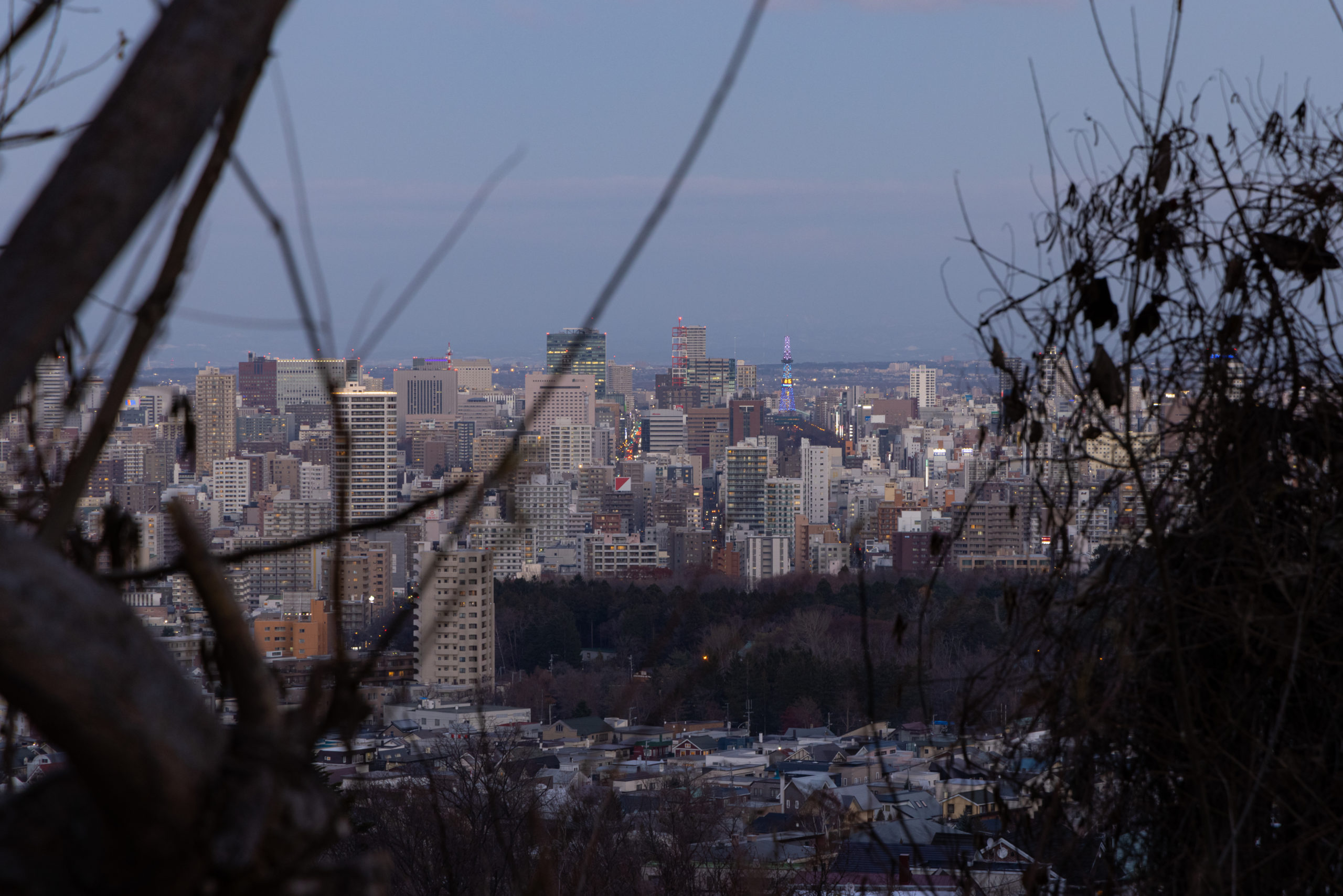 大倉山の風景